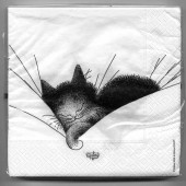 Serviettes Gros Dodo - Collection Chats Dubout
