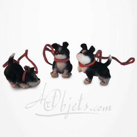 Rufus - Chien - Les tout petits trois