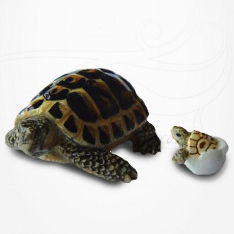 Figurine Miniature - Tortue Hermann et bébé tortue - Porcelaine